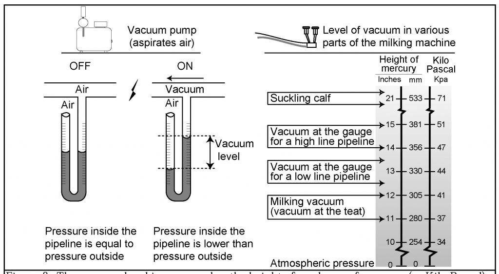 Creating And Measuring Vacuum